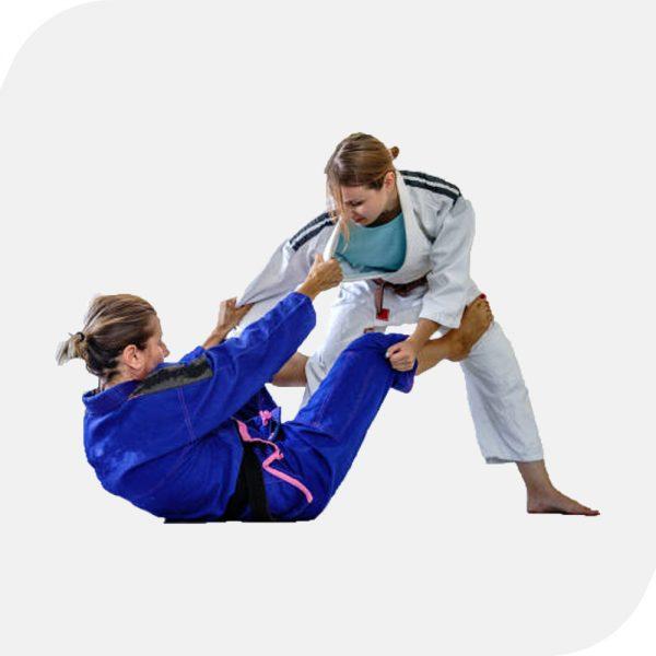 BJJ / Jiu Jitsu